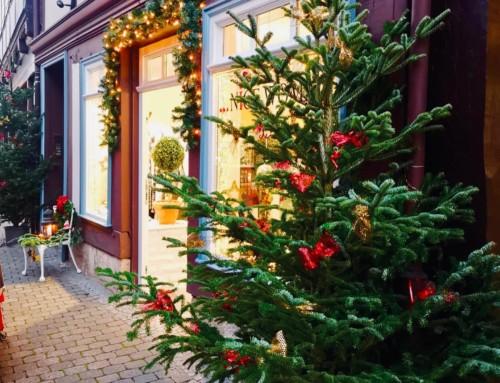 Wir bringen euch in Weihnachtsstimmung